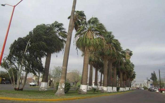 Persisten vientos para este martes en la región