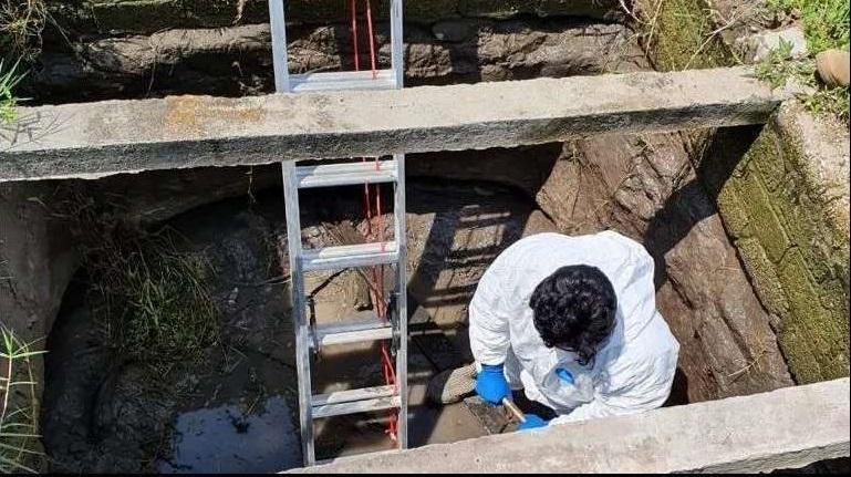 En lo que va del año han extraído 31 cuerpos de fosas clandestinas