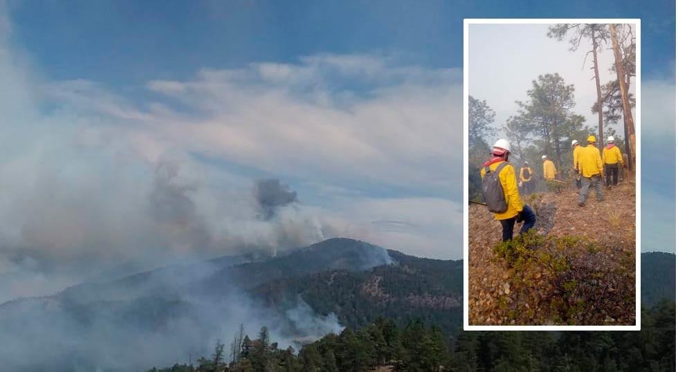 Se suman otras 40 brigadas a combate vs incendio en Santa Eduwiges
