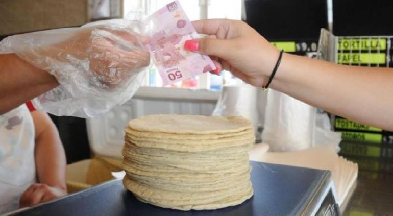 Kilo de tortilla subiría hasta 24 pesos, alertan productores
