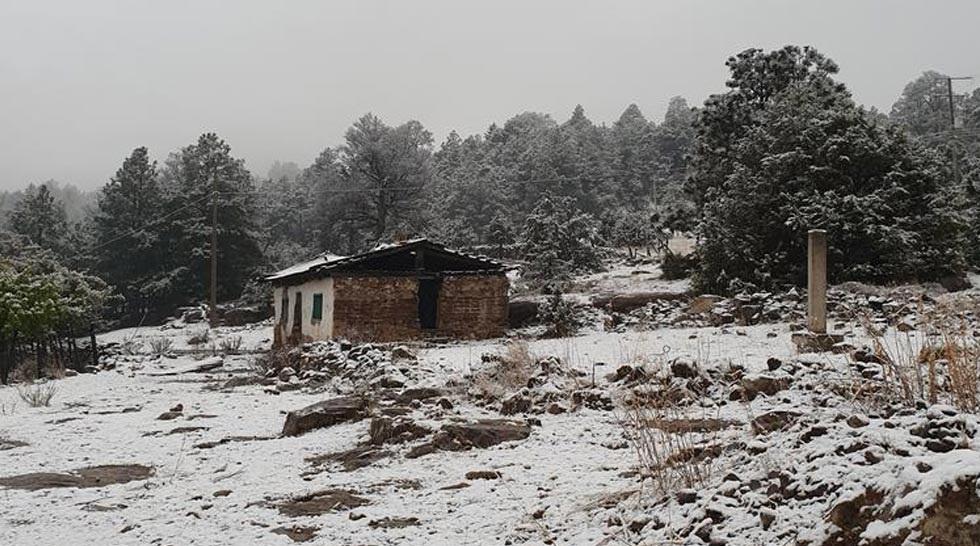 Video: Cae inusual nevada en El Vergel