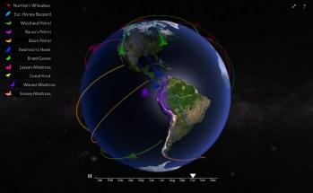 Globe of Migration