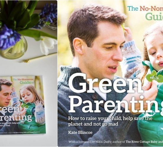 Book Review | Green Parenting 13