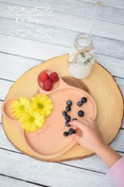 eco kids wooden bunny plate