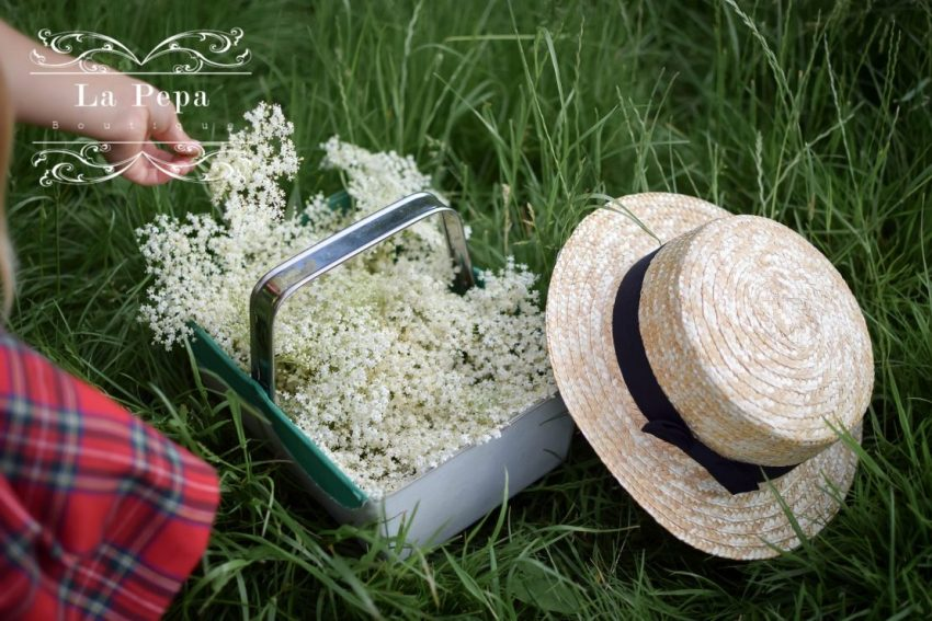 Eco Kitchen | Foraging Elderflowers and Drying for Tea
