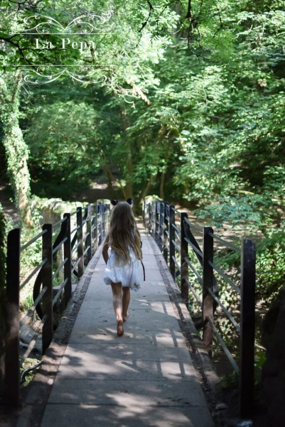 Wild Walks | Snuff Mills Valley by the River Frome
