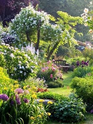 jardin a l anglaise ou jardin anglais