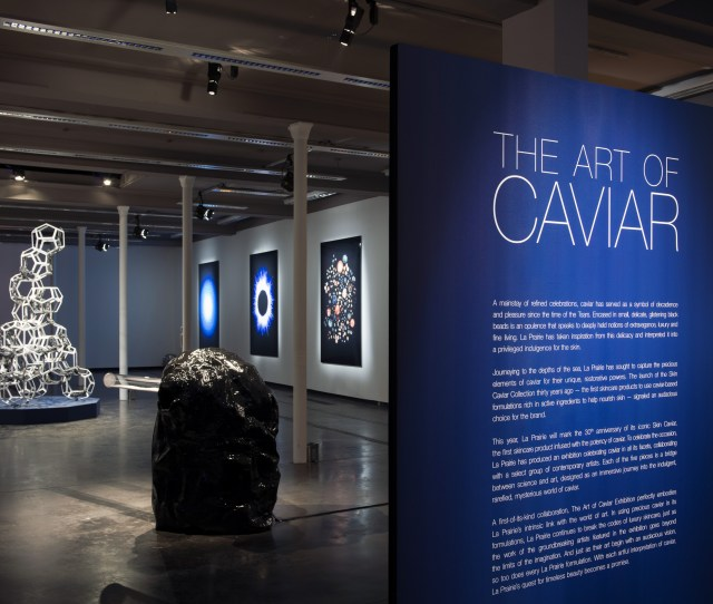 The Five Valiant Art Installations Will Travel To Paris New York Hong Kong And Shanghai Where Visitors Will Witness Art And Science Coming Together In An