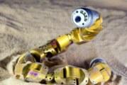 Séisme à Mexico : des robots-serpents ont participé aux recherches !