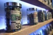 Le Mexique légalise les produits dérivés du cannabis !