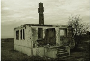 kiipsaare-house