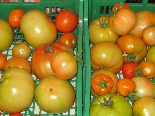 El Mercado Dominical de Cangas de Onís