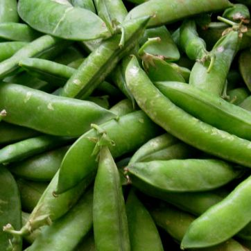 Verduras asturianas