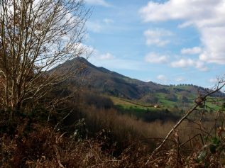 Naturaleza en Romillo, Parres, Asturias