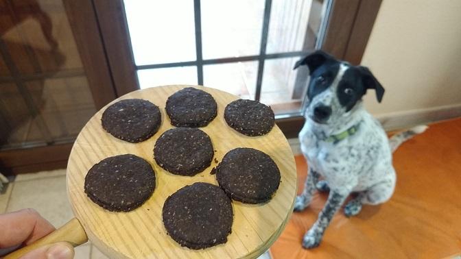 Galletas para perros de algarroba y avena