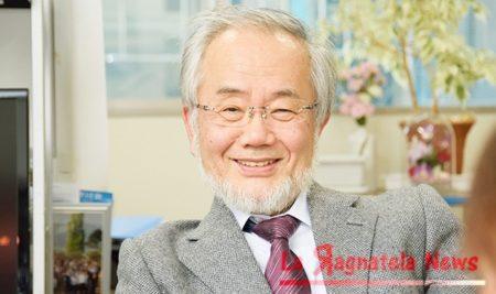 premio-nobel-medicina-2016-a-yoshinori-ohsumi