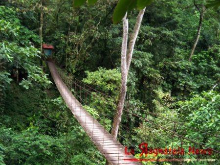 cede-un-ponte-sospeso-in-colombia