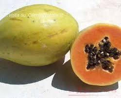 Papaya.2