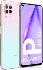 P40.LIT1.pink