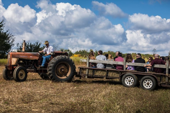 Guests arrive at Bunnell Farm wedding ceremony on tractor