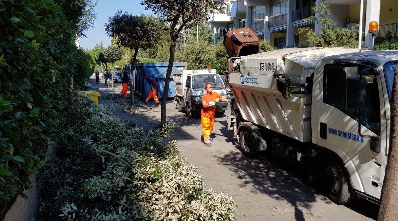 Ufficio Verde Pubblico Salerno : Foto aversa. verde pubblico continuano gli interventi in via