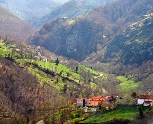 Entorno alojamiento casa rural L'Arboleu Asturias Teverga