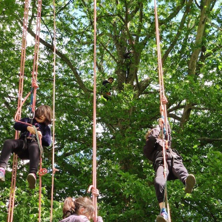 Les Éclés au Jardin des Mille Pas à Rennes - mai 2019