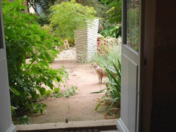 access-to-garden
