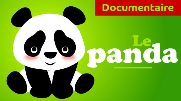 le panda documentaire animalier pour maternelle