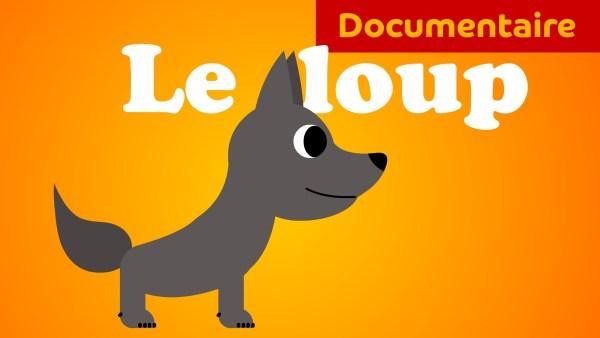 Pourquoi j'ai peur du loup - Le loup documentaire animalier pour enfant