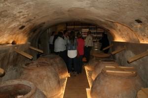 Visitas a la Escuela del Vino de Cehegín