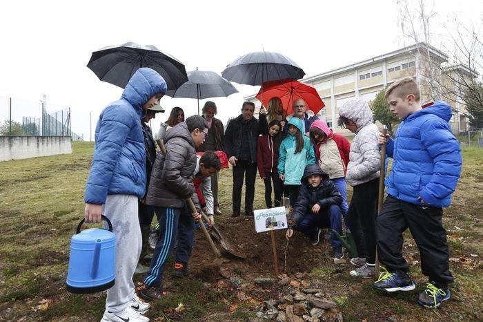Celebración dos escolares de A Merca no día da árbore e da auga