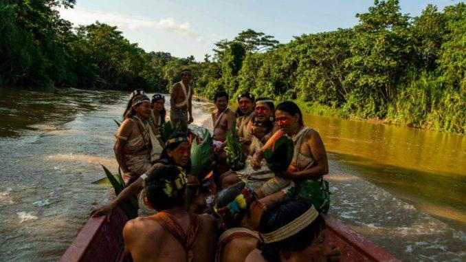 Piden mantener aislamiento en Amazonía de Ecuador para proteger a indígenas  | La República EC
