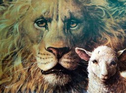 REMINDER: LIONs for LAMBs Voting