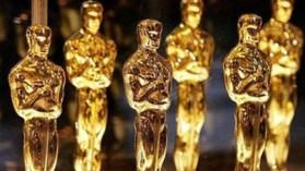 LAMB devours the Oscar needs an editor!