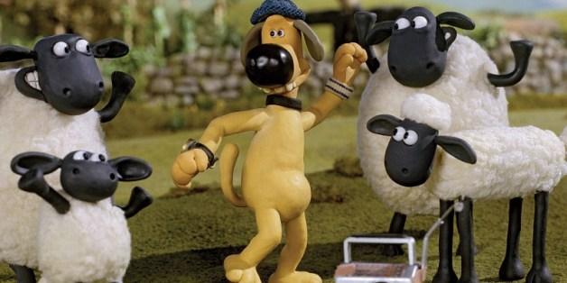 sheep dance