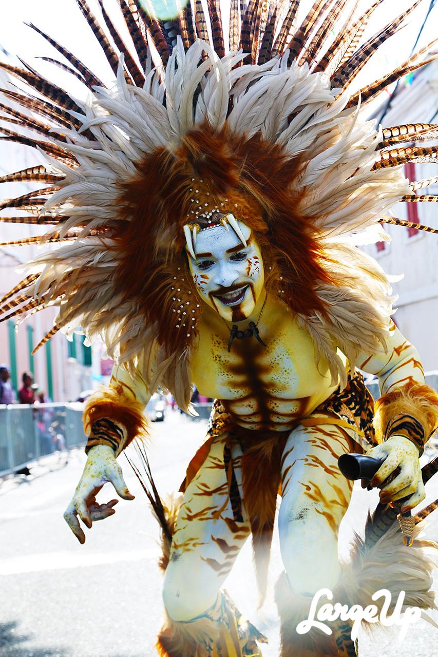 St-Thomas-Carnival-2015-04