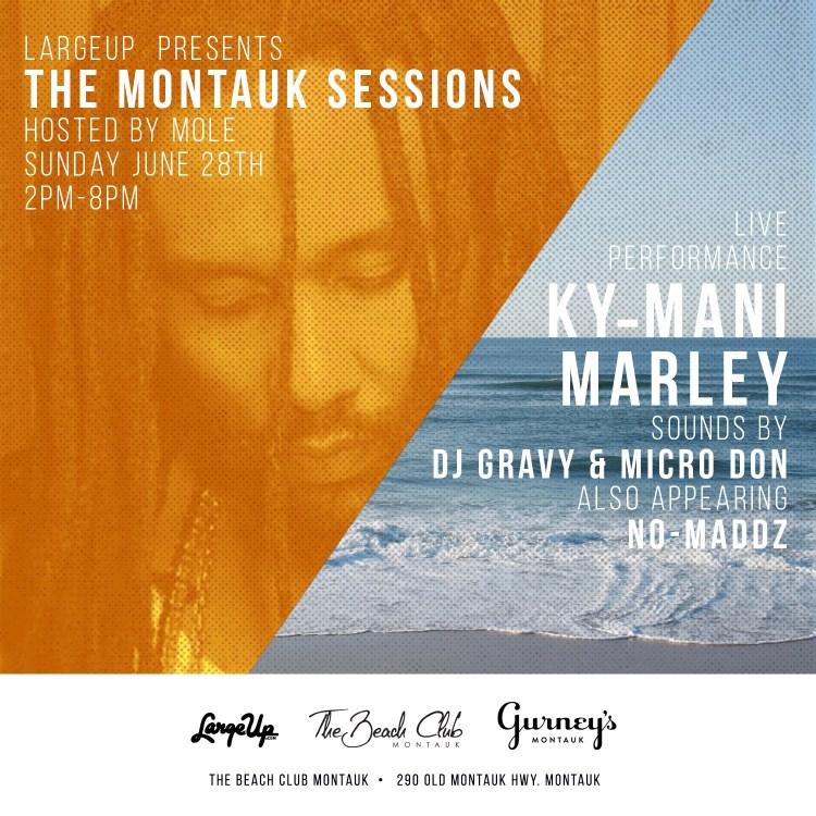 the montauk sessions.v4