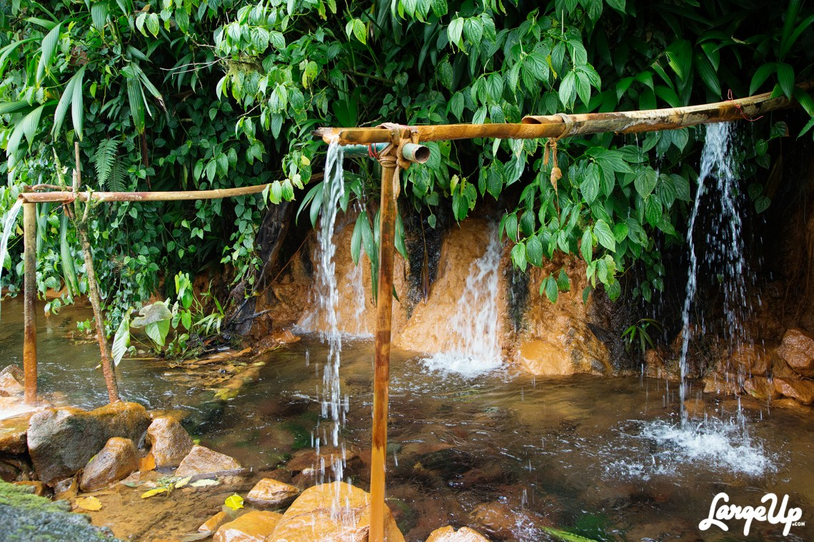 dominica-trafalgar-falls-3