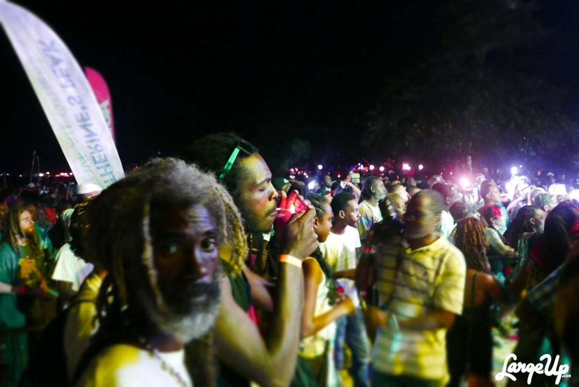 jamaica-cannabis-cup-38
