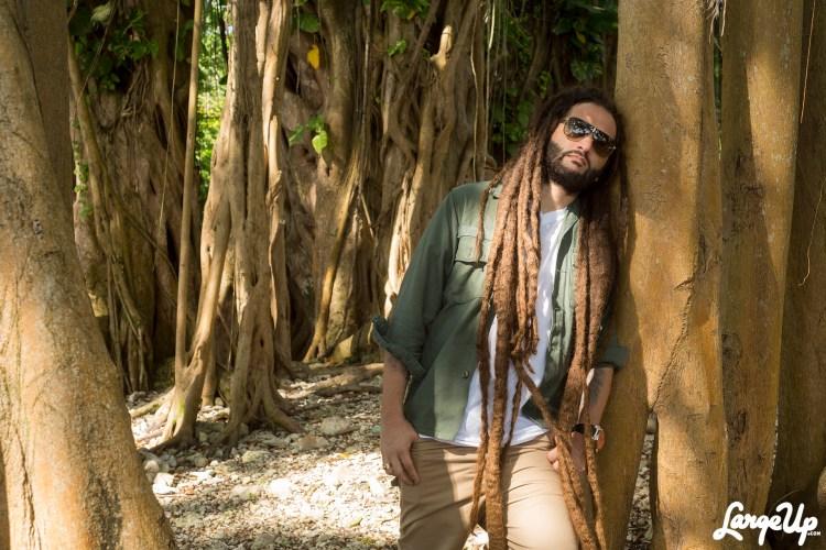 Alborosie-Freedom-Fyah-Jamaica-reggae-Protoje