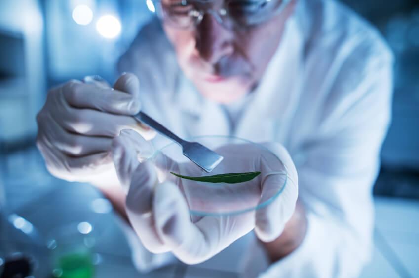 Ciencias naturales: rige la convocatoria para el Premio Fernando Lahille