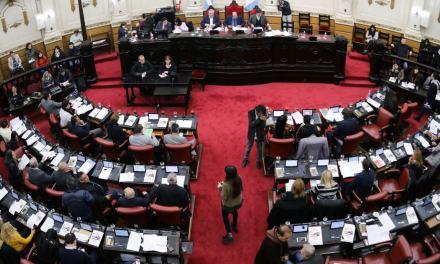 Se aprobó el Plan Provincial de Agroforestación