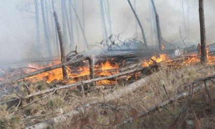 Hasta mañana es EXTREMO el riesgo de incendio en la provincia