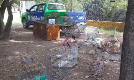 Policía Ambiental secuestró 72 aves en Río Cuarto