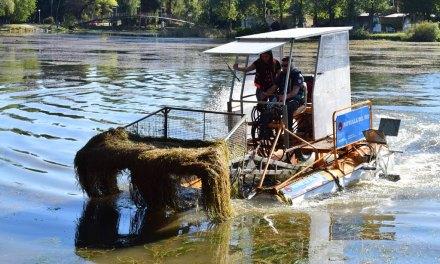 Río Cuarto: Avanza la limpieza del lago Villa Dalcar