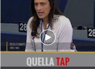 Tap, Grillo rilancia la denuncia della tarantina D'Amato