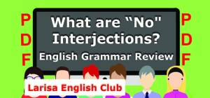 What are No Interjections PDF