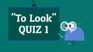 Quiz Verb Look