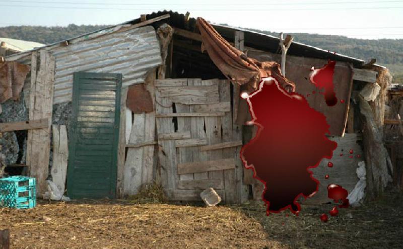 Ωμή απόπειρα δολοφονίας: Πήγε στη στάνη και τον πυροβόλησε με καραμπίνα!